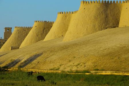 Uzbekistan womens tours